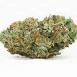 King Kong weed